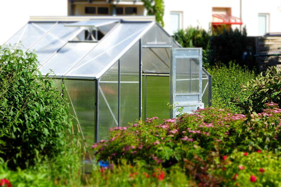 A Basic Garden Greenhouse